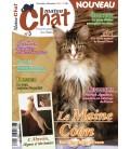 Matou Chat n°003