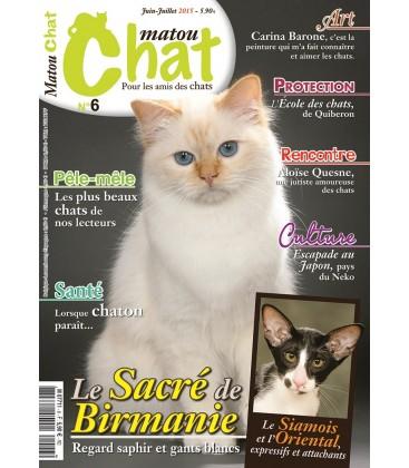 Matou Chat n°6