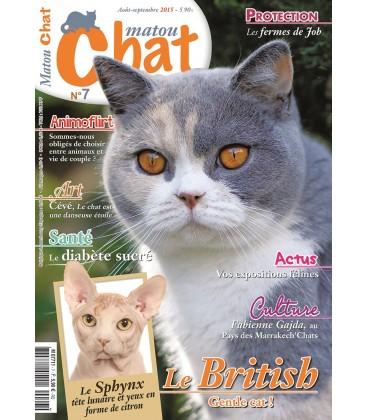 Matou Chat n°7