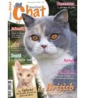Matou Chat n°007