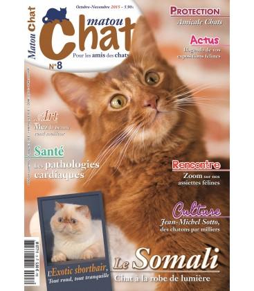 Matou Chat n°8