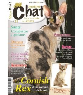 Matou Chat n°011