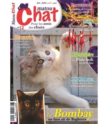Matou Chat n°12