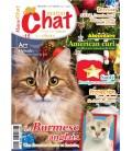 Matou Chat n°015