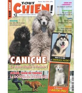 Magazine Tout Chien n°012 (T)