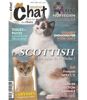 Matou Chat n°023