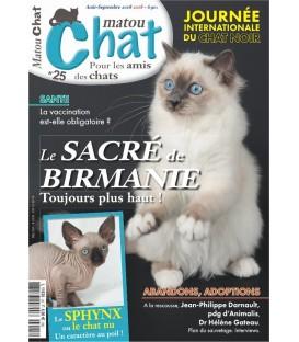 Matou Chat n°025