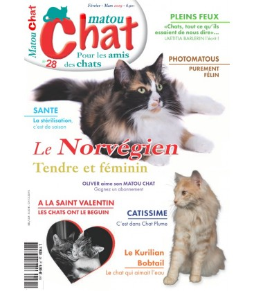 Matou Chat n°027