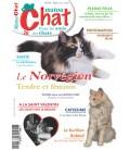 Matou Chat n°028