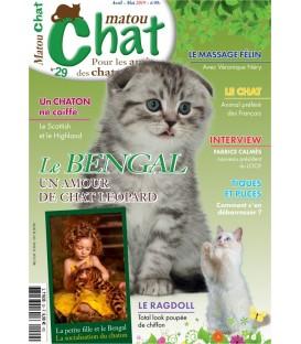 Matou Chat n°029