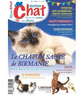 Matou Chat n°030 (T)