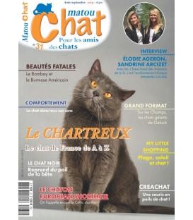 Matou Chat n°031 (T)