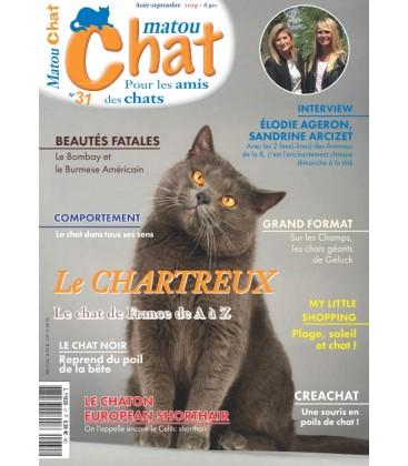 Matou Chat n°031