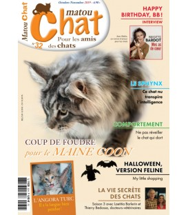 Matou Chat n°032