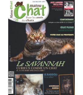 Matou Chat n°035