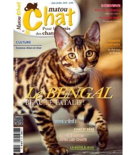 Matou Chat n°036