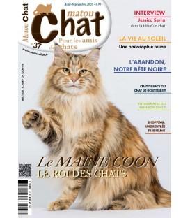 Matou Chat n°037 (T)