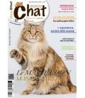 Matou Chat n°037