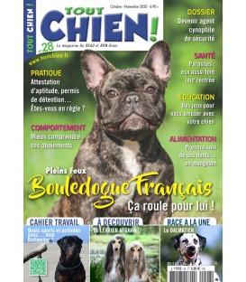Tout Chien n°027 (T)