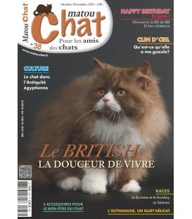 Matou Chat n°038