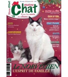 Matou Chat n°039 (T)